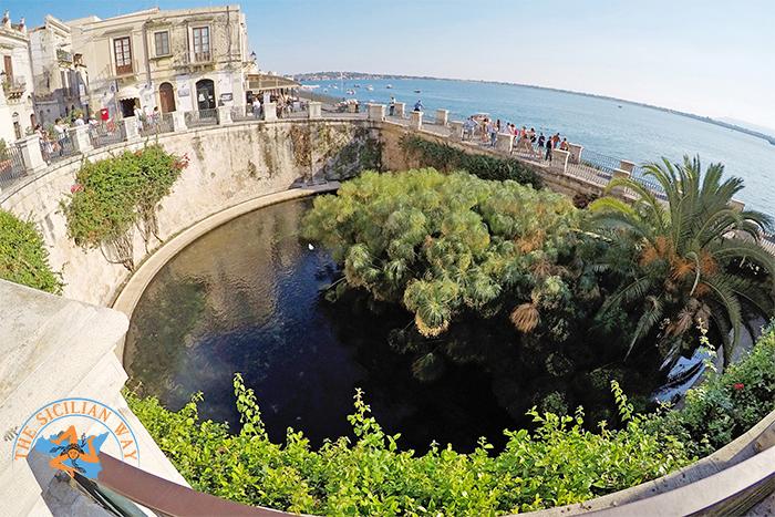 FONTE ARETUSA A SIRACUSA è uno specchio d'acqua nell'isola di Ortigia. CROCIERE NEL CUORE
