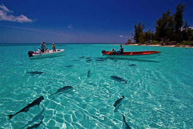 isole seyschells