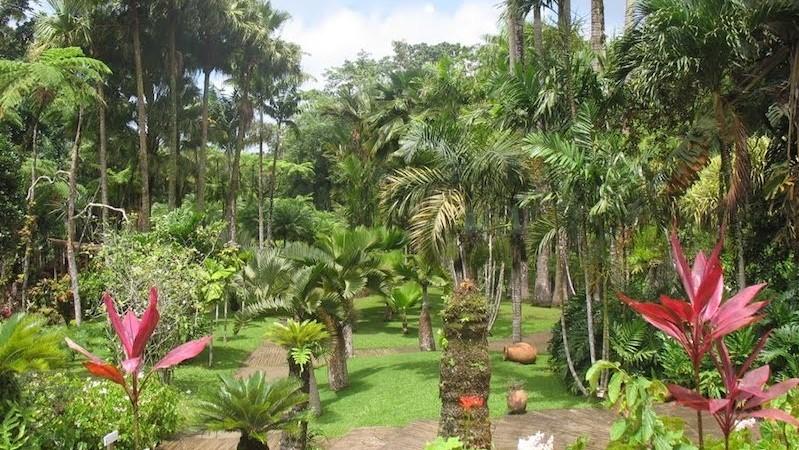Giardini botanici di Balata - Martinica