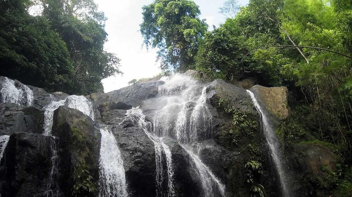Argyle Waterfall  - Tobago